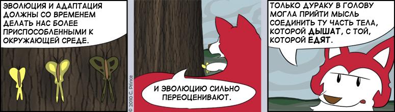 RUS-20101113